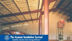 Image-Commercial-Steel-roof-walls-American-Outdoor-Adventures-02-Icynene-2005-MKT